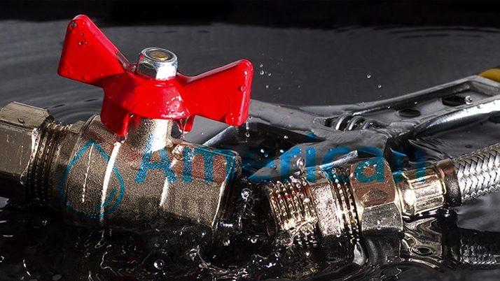 Common Preventable Plumbing Issues