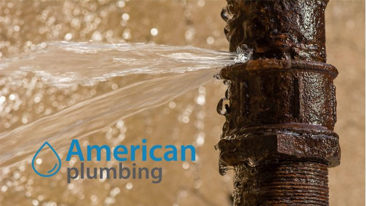 Detect and Repair Plumbing Leaks