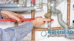 Professional Plumbing Installations