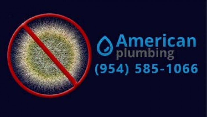 Mold And Mildew Archives Plumber Fort Lauderdale
